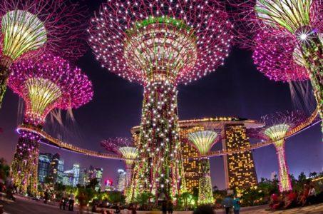 Cách đi du lịch Singapore hướng dẫn mua vé Gardens by the Bay giá rẻ