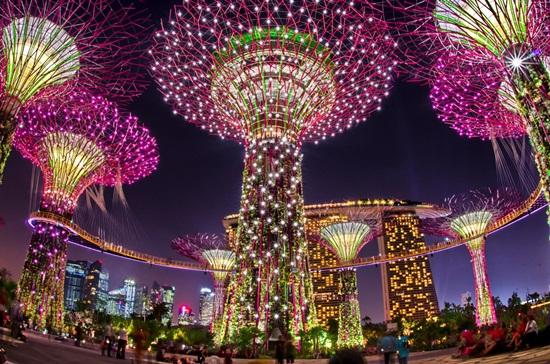 Cách đi du lịch Singapore hướng dẫn mau vé Gardens by the Bay giá rẻ